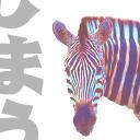 Shima icon
