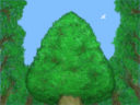 Forest2 thumb