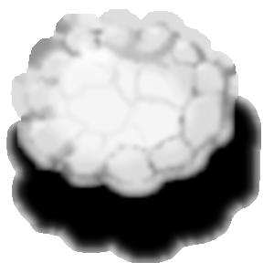 Material 323136 1